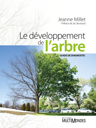 Le_developpement_de_l_arbre